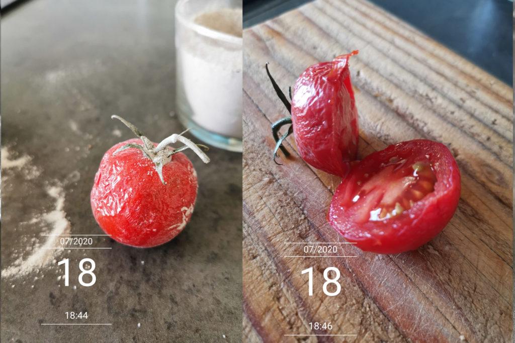Tomate conservée un mois dans la cendre. Aspect et gout.